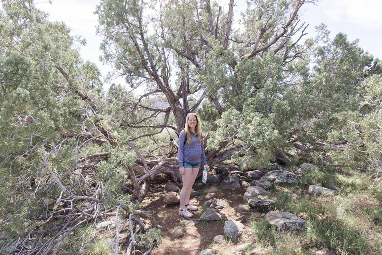 Sedona Arizona Vacation10