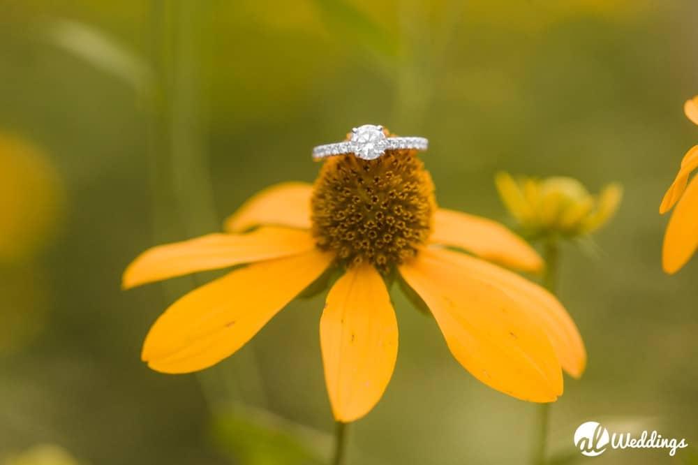 Kiesel Park Auburn Al Engagement Photography 67
