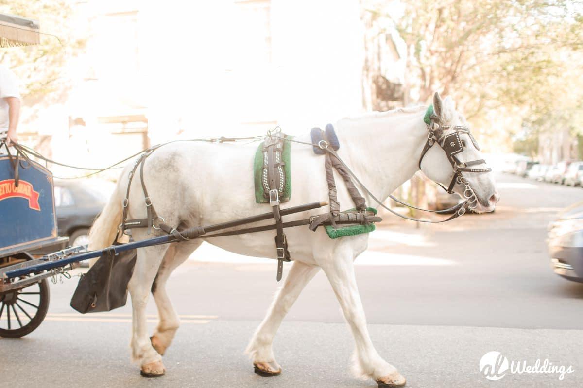 charleston-south-carolina-wedding-photographer-10